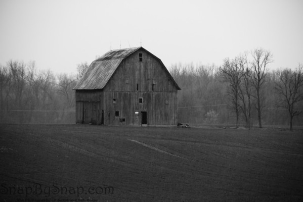 Old barn in the rain.
